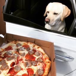 dan.dougherty2 on One Bite Pizza App