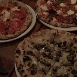 porkrat on One Bite Pizza App