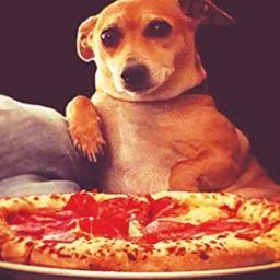 allstarme on One Bite Pizza App